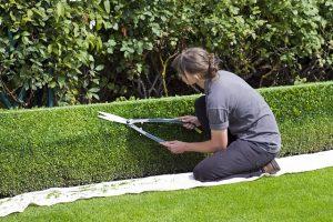 élagage de jardin