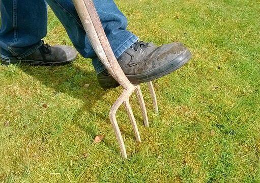 travaux de jardinage ©Pixabay