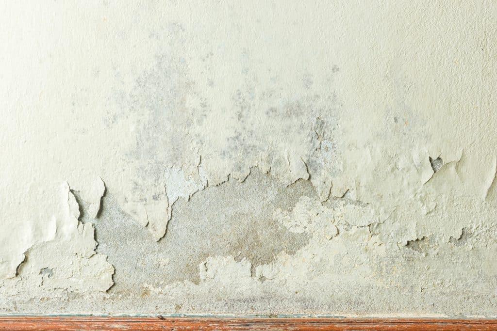 recourir à l'assèchement des murs
