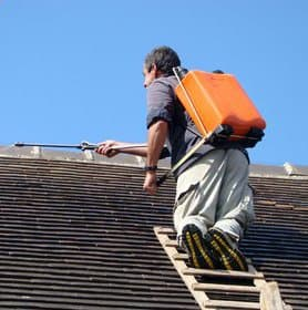 démoussage toiture ©freeimage