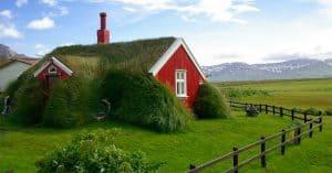 maison avec toiture végétale