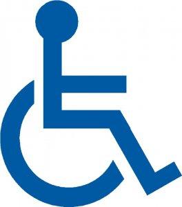 monte escalier handicap