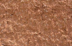mur en torchis crépis