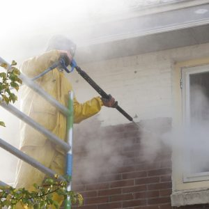 nettoyage de façade à l'eau de javel
