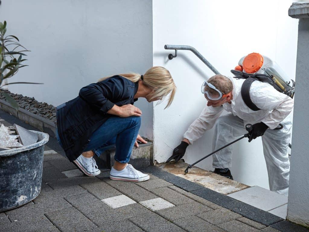 traitement d'humidité de mur